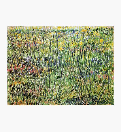 Vincent van Gogh Flowering Meadow Photographic Print