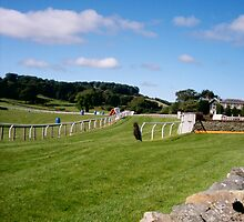 The Cartmel Racecourse by blueclover