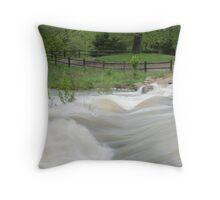 Lake Olathe Throw Pillow
