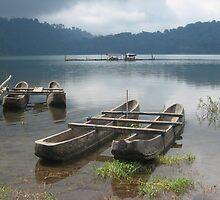 Lake, Bali by gaylebaird