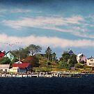 Big Tancook Island Houses by Amanda White