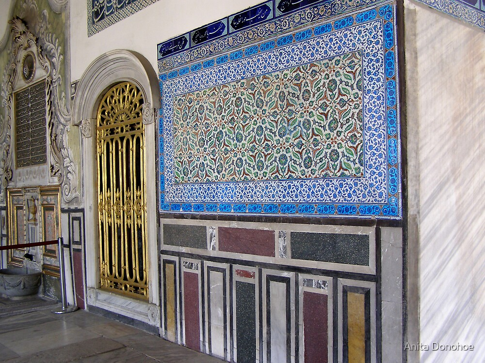Topkapi Palace Wall by Anita Donohoe