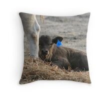Calf Feeds Throw Pillow