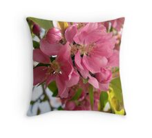 Pink Apple Blossoms Throw Pillow