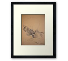 Da Vinci - copy Framed Print