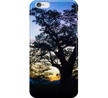 Baobab Sunset iPhone Case/Skin