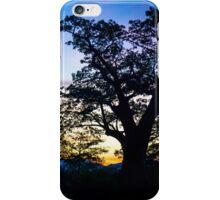 Baobab Sunset iPhone Case/Skin
