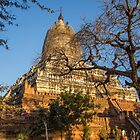 Myanmar. Bagan. One of the many Temples. by vadim19