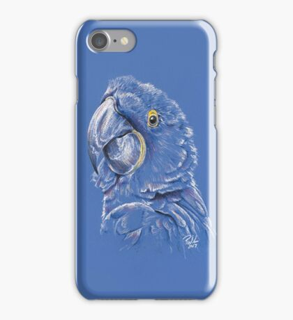 Pirate Not Included iPhone Case/Skin