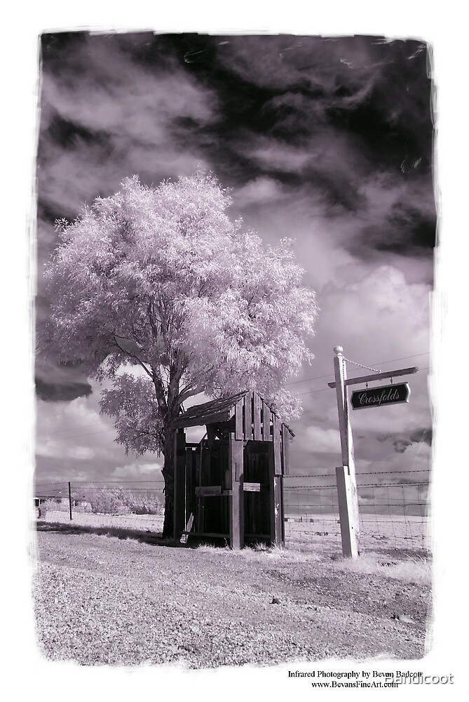 Another IR by Bandicoot