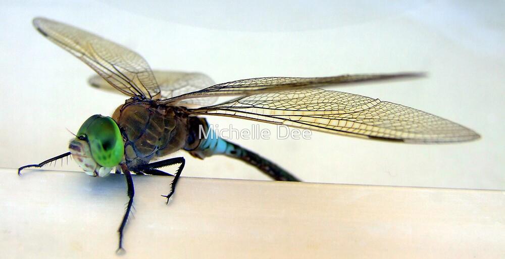 Winging It by michelleduerden