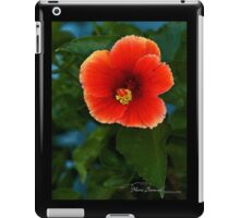 Vermillion Hibiscus - Cool Stuff iPad Case/Skin