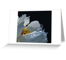 "Peony-"" Shades of Blue and Gold"" Greeting Card"