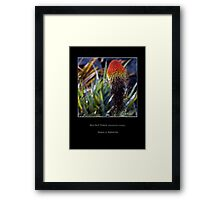 Red Hot Poker - Cool Stuff Framed Print