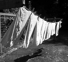 Laundry by Lee Anne French