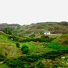 Lonely Cottage, Fanad Head, Donegal, Ireland by Shulie1