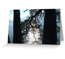 DERWENT WATER TREES Greeting Card