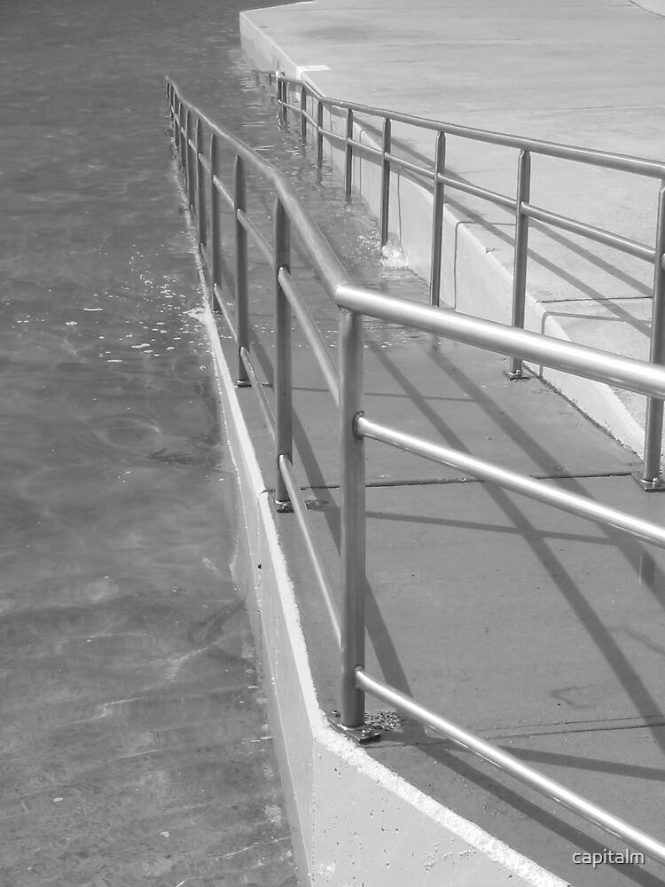 pool rail by capitalm