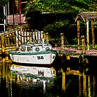 River Boat by Peter Kewley