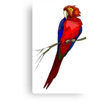 Red Macaw Parrot Canvas Print