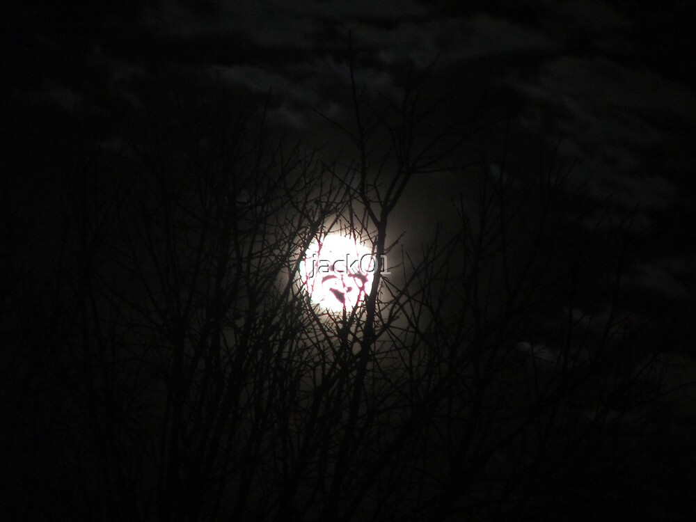 face in the moon  by jack01
