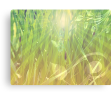 Abstract grass background Canvas Print