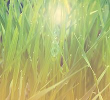Abstract grass background 2 by AnnArtshock
