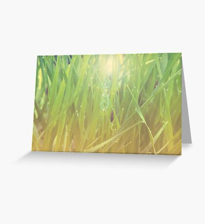 Abstract grass background 2 Greeting Card