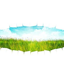Grass background with ripped paper 2 by AnnArtshock