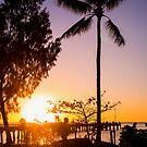 Sunrise stroll - Palm Cove by Norman Repacholi