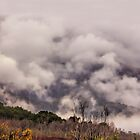 Misty Mountains by wallarooimages