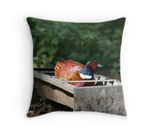 Grain Thief Throw Pillow