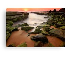 Mossy Dream Canvas Print