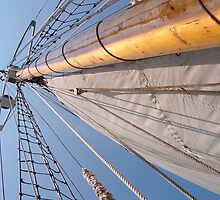 Mast by Ed Herr