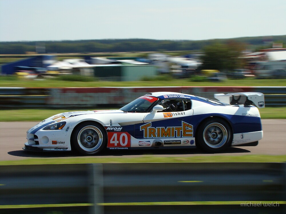 Dodge Viper by michael welch