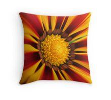 Sunburst Daisy... Throw Pillow