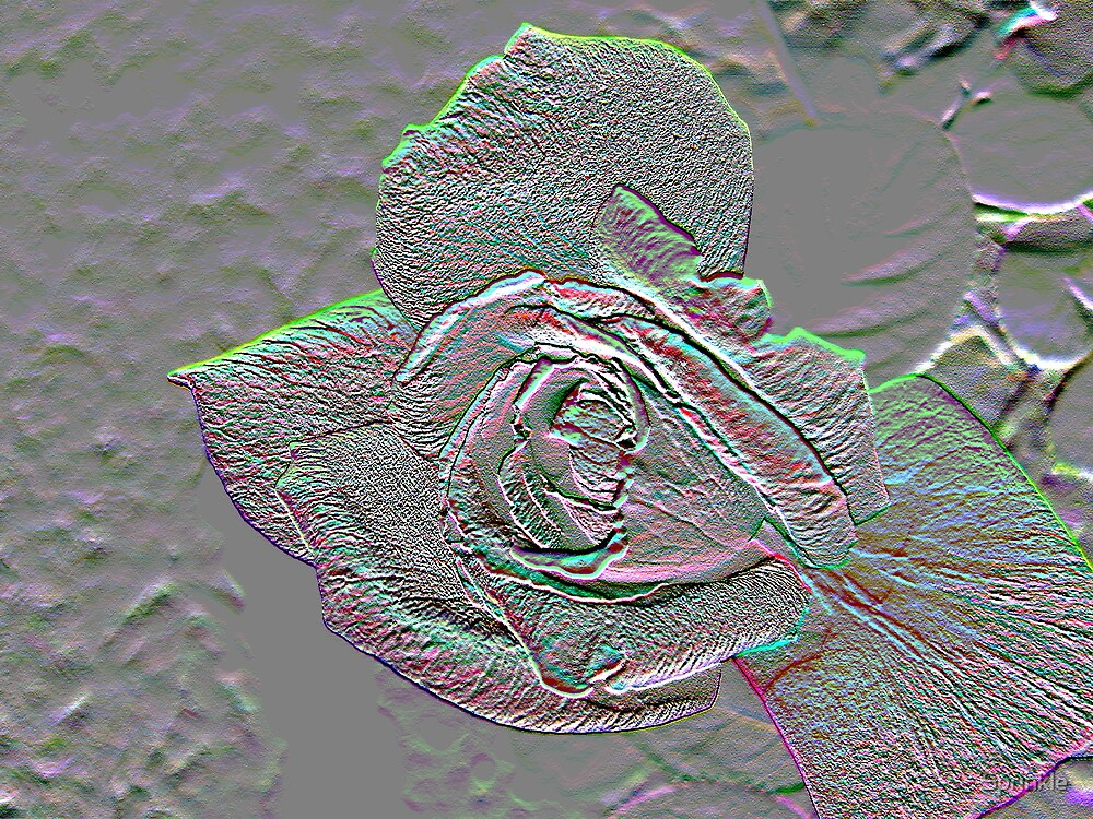 Rose Borealis Embossed by Sprinkle