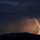 Wollemi Lightning by Will Barton