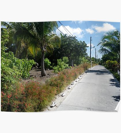 Conch Lined Island Road Poster