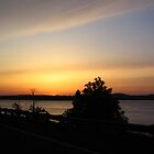 Sunset over Columbia River - Oregon (3) by lareejc