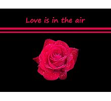 Rose Radtko - Love is in the air (I) Photographic Print