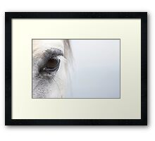 White Horse at Dawn 02 Framed Print