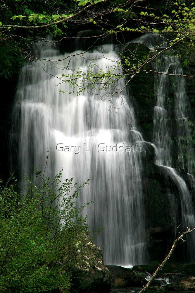 Meigs Falls II  by Gary L   Suddath