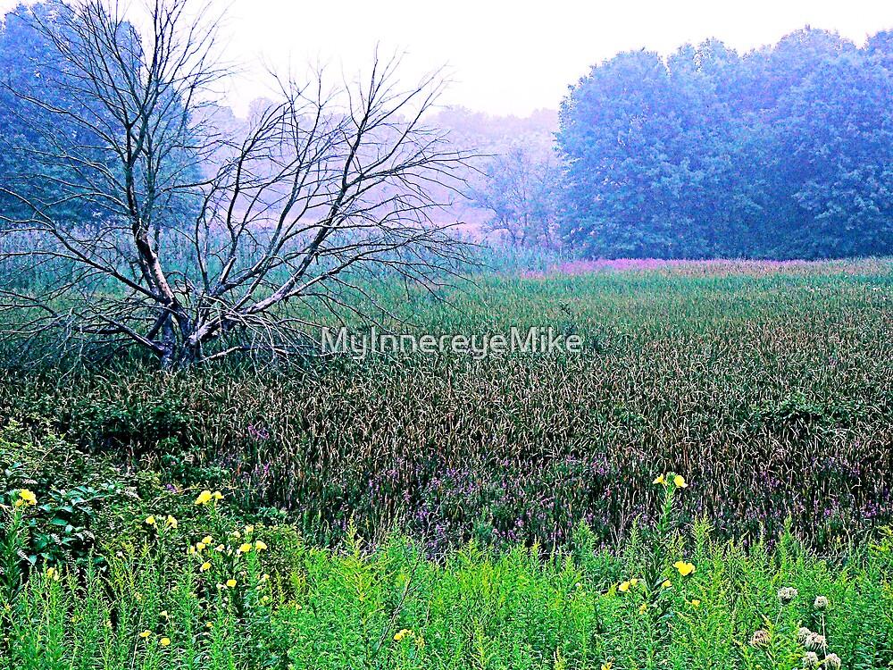 #195  Field In Spring by MyInnereyeMike