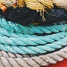 Old Rope by Greg Tippett