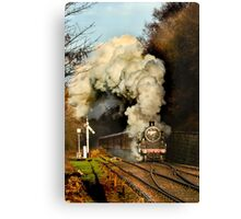 Steaming Canvas Print