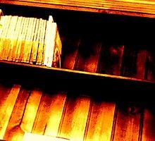 Bookshelf 1 by Treecreeper