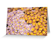 Floral Overflow - Happy Pink and Orange Autumn Mums Greeting Card