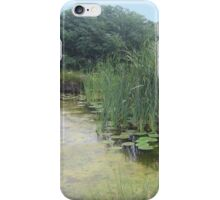 The Hearth and Soul Retreat iPhone Case/Skin