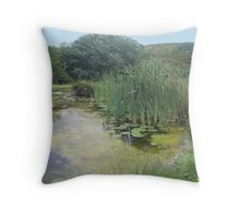 The Hearth and Soul Retreat Throw Pillow